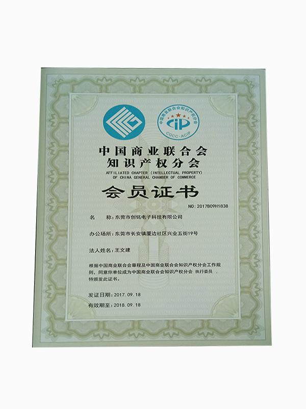 知识产权执行会员证书